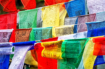 Buddhist Prayer flags carrying worshippers wishes sway in the wind, Bhutan, Asia