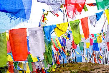 Prayer flags, Chelela Pass, Himalayas, Bhutan.