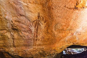 Rock art endemic to the Kimberley, called Gwion Gwion or Bradshaw Art, Vansittart Bay, Kimberley, Western Australia, Australia, Pacific