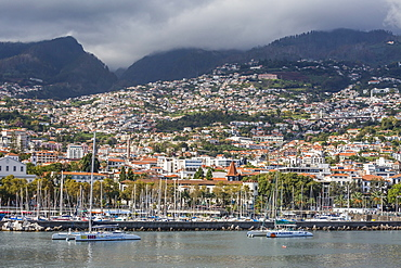 Waterfront view in the heart of the capital city of Funchal, Madeira, Portugal, Atlantic, Europe
