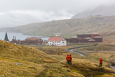 Overview of the abandoned whaling station in Grytviken Harbor, South Georgia, Polar Regions