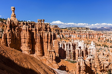View of Thor's Hammer from the Navajo Loop Trail in Bryce Canyon National Park, Utah, United States of America, North America