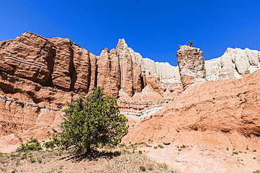 Red rock sandstone formations on the Grand Parade Trail, Kodachrome Basin State Park, Utah, United States of America, North America