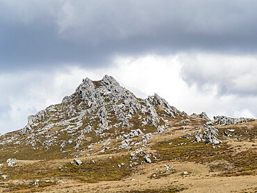 Mount Williams, site of the Falkland Conflict in June 1982, Falkland Islands, South America