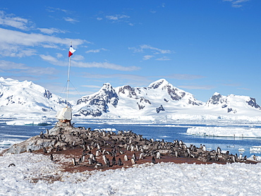 Gonzalez Videla Base, a Chilean Research Station in Paradise Bay, Antarctica, Polar Regions