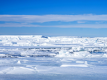 Sea ice hummocks and floes in Erebus and Terror Gulf, Weddell Sea, Antarctica, Polar Regions