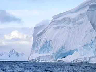 Ice covered shoreline in Wilhamena Bay, Antarctica, Polar Regions