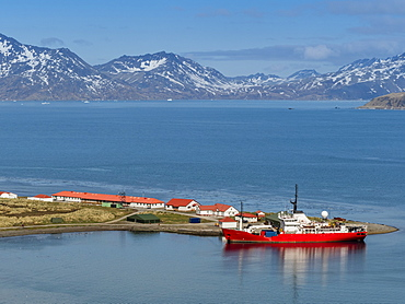 British Antarctic Survey research ship at King Edward Point in East Cumberland Bay, South Georgia, Polar Regions