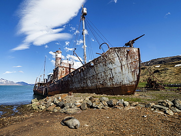 Rusting catcher boat at the abandoned Norwegian whaling station at Grytviken, East Cumberland Bay, South Georgia, Polar Regions