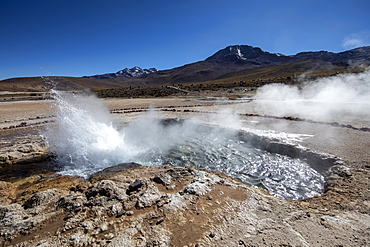 Geysers del Tatio (El Tatio), the third largest geyser field in the world, Andean Central Volcanic Zone, Antofagasta Region, Chile, South America