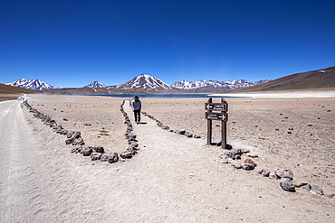 Tourist on the path to Laguna Miscanti, a brackish lake at an altitude of 4140 meters, Central Volcanic Zone, Chile, South America