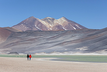 Coupe walking in Salar de Aguas Calientes, Los Flamencos National Reserve, Antofagasta Region, Chile, South America