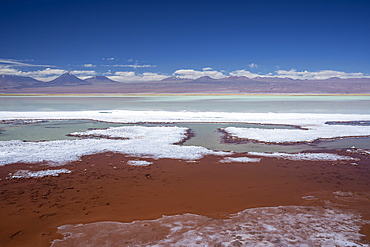 Laguna Tebenquicne, a salt water lagoon in the Salar de Atacama, Los Flamencos National Reserve, Chile, South America