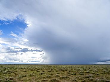 Rain falling on the Serengeti Plains, Serengeti National Park, UNESCO World Heritage Site, Tanzania, East Africa, Africa