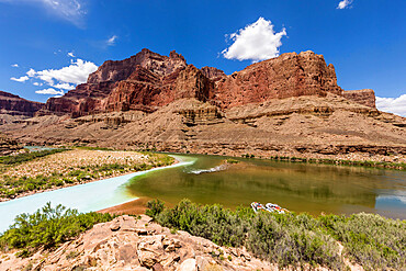 Confluence of the Little Colorado and Colorado Rivers, Grand Canyon National Park, Arizona, USA, North America.