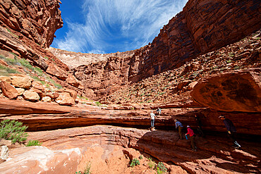 Hikers in Marble Canyon along the Colorado River, Grand Canyon National Park, Arizona, USA.