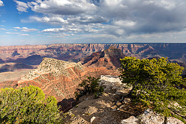 View from Cape Royal Point of the north rim of Grand Canyon National Park, Arizona, USA, North America.