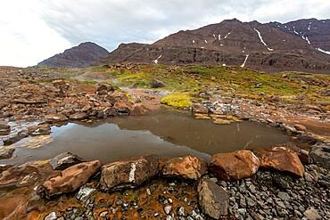 The hot springs at Romer Fjord, Scoresbysund, eastern Greenland, Polar Regions