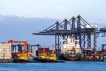 Cargo ships being loaded on Lake Gatun, near Gamboa, Panama Canal, Panama, Central America