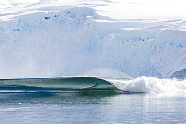 A massive series of waves are formed after a huge calving event from the glacier in Neko Harbor, Antarctica.