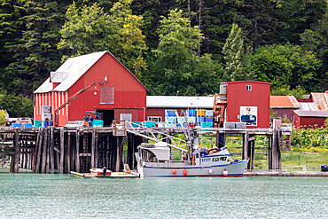 Fish processing plant near the Chilkat River, Haines, Southeast Alaska, United States of America.