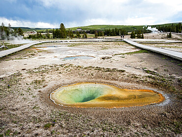 Belgian Pool, in the Norris Geyser Basin area, Yellowstone National Park, Wyoming, USA.