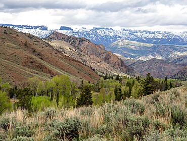 The Washakie Wilderness area within Shoshone National Forest, Wyoming, USA.