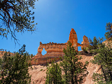 A view of Tower Bridge from the Fairyland Trail in Bryce Canyon National Park, Utah, USA.