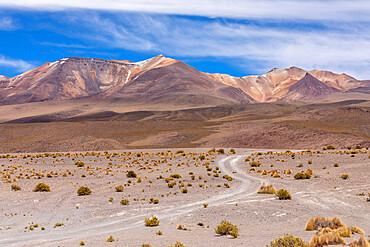 View of the altiplano near Cañapa Lake, Laguna Cañapa, in the Potosí Department of southwestern Bolivia