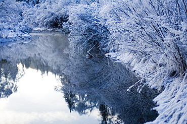 Reflection of sky ans bushes in River Isar, Bavaria, Germany