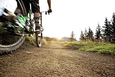 Downhill mountain biker off-roading, Morzine, Haute-Savoie, France