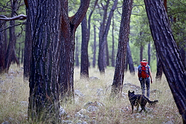 Woman and a dog hiking along long-distance footpath Lycian Way, Antalya, Turkey