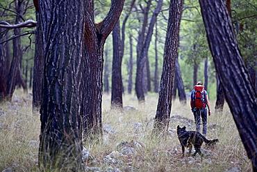 Woman and a dog hiking along long-distance footpath Lycian Way, Antalya, Turkey