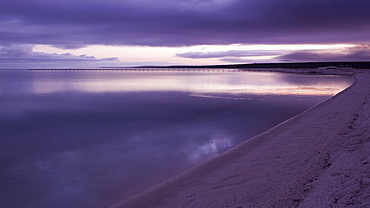 Beach at dawn in violet light, Shark Bay Road, near Denham-Hamelin Road, Western Australia, Australia