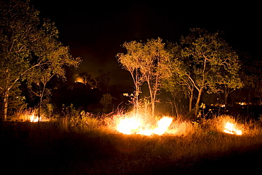 A bushfire burning at night, near Lake Argyle, near Kununurra, Western Australia, Australia