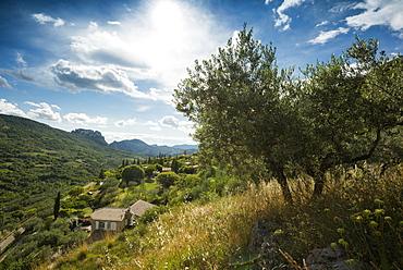 La Roche sur le Bois, near Buis-les-Baronnies, Departement Drome, Region Rhones-Alpes, Provence, France