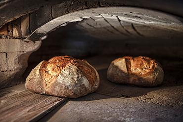 tasty German bread ibeing taken out of the oven, Vellberg, Schwaebisch Hall, Baden-Wuerttemberg, Germany