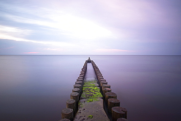 Groynes at the Baltic sea in the evening atmosphere, Dierhagen, Mecklenburg Vorpommern, Germany