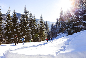 Backcountry skiers in the Tennengebirge mountains, Salzburg, Austria