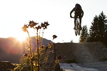 Mountain biker in Bike park Saalbach-Hinterglemm, Salzburg, Austria