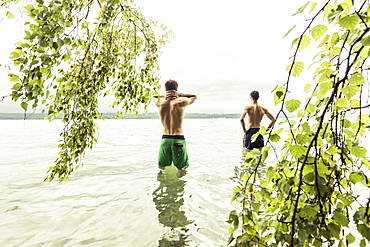 two young men going for a swim in Lake Starnberg near a birch tree, Berg, Upper Bavaria, Germany
