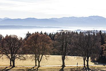 Runner on alley in Autumn, Ilkahoehe, Tutzing, Lake Starnberg, Bavaria, Germany