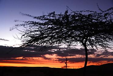 Sunset near Mamshit, Desert of Negev, South-Israel, Israel