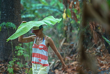 Young woman holding a big leaf over her head to protect herself from the rain, Sao Tome, Sao Tome and Principe, Africa