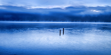 View of the Roseninsel at the blue hour in the morning, Lake Starnberg, Feldafing, Bavaria, Germany