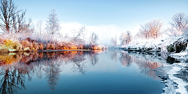 Hoarfrost on reeds and trees on the side of the Loisach bank, Bavaria, Germany