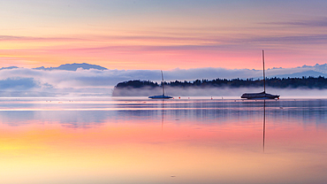 Sailboats on Lake Starnberg in the morning fog at sunrise, Tutzing, Bavaria, Germany