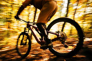 Mountain biker rides through autumn forest, wheel, bicycle, mountain bike, autumn,