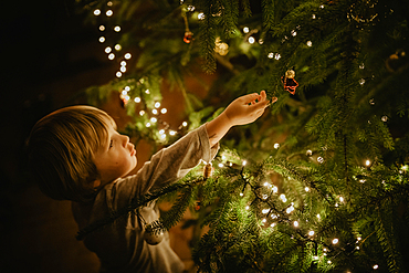 little boy stands in front of the Christmas tree, Christmas, family