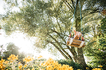 Little boy swings in the garden, yellow flowers, swings, joy, Allgäu, Bavaria